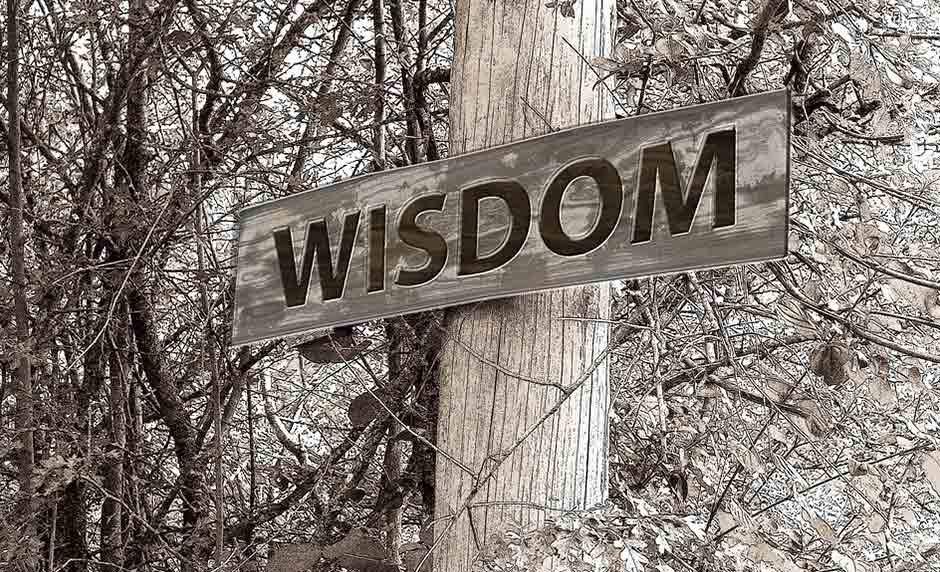 What Parents Should Teach Their Kids About True Wisdom [One Minute Feature]