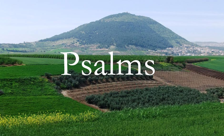 Why Overwhelmed Parents Should Seek Comfort in the Psalms [One Minute Feature]