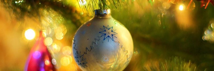 How to Support the Ministry of Shepherds Hill Academy This Christmas Season [Podcast]